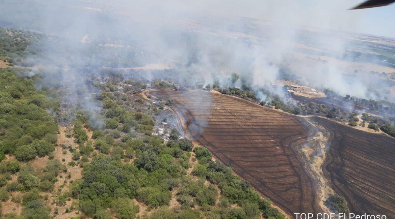 Declarado un incendio en Lora del Río